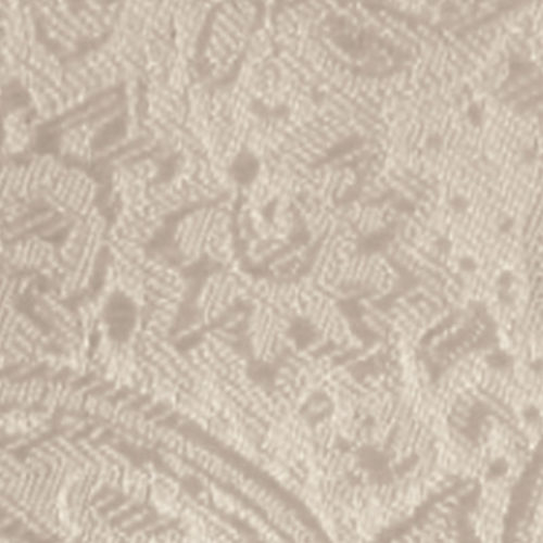 biscotti modern solid paisley accessory option