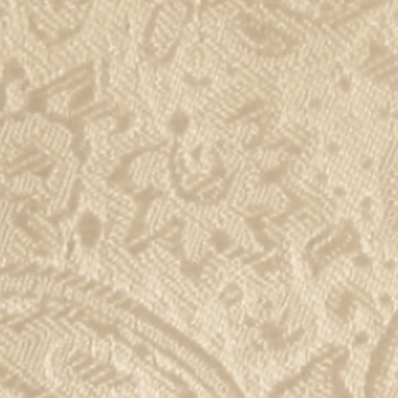 nude modern solid paisley accessory option